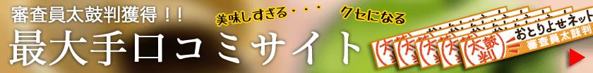 審査員太鼓判獲得!最大手口コミサイト